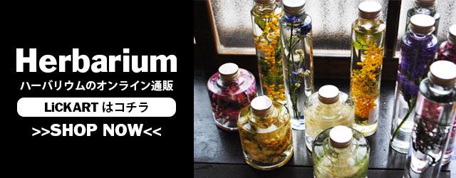 herbarium_banner